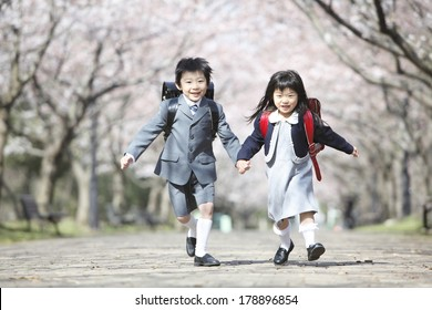 Primary Japanese boy and Japanese girl who are running along the path lined with cherry blossom trees