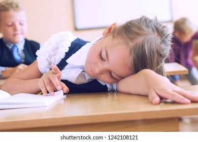 Primary little schoolgirl resting lying on desk.