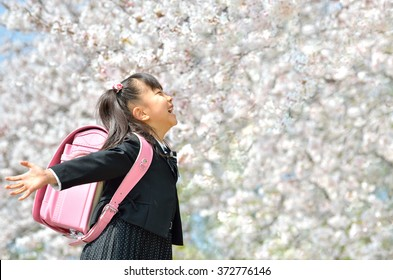 primary school student (new first grader-cherry blossom)