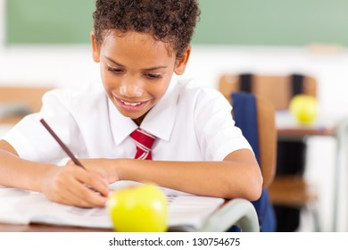primary schoolboy busy writing class work