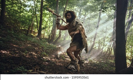 Primeval Caveman Wearing Animal Skin Holds Stone Tipped Spear Looks Around, Explores Prehistoric Forest in a Hunt for Animal Prey. Neanderthal Going Hunting in the Jungle