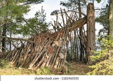 Primitive, rustic shelter in the woods made of a fallen log and branches. Concepts of survival, off the grid, and wilderness