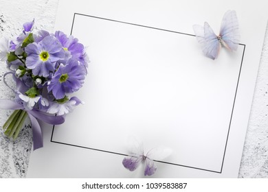 primrose flower on paper card,copy space for your text