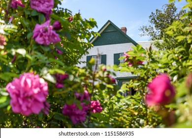 Prince Edward Island, Canada -Jul 16th 2018: The house of Anne of Green Gables through the pink flowers. Taken in Cavendish.