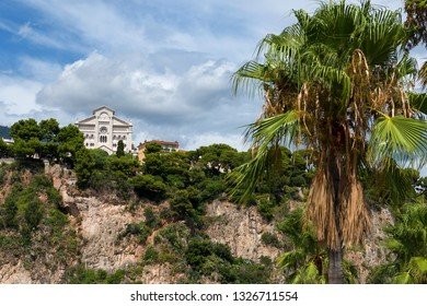Principality of Monaco - 02.09.2018: Cathedral of Our Lady Immaculate (Cathédrale Notre-Dame-Immaculée) seen from Fontvieille with palm tree  in foreground