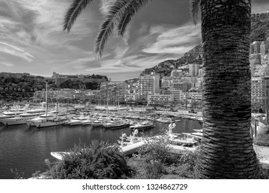 Principality of Monaco - 02.09.2018: Port Hercule overlook with La Condamine, Monaco-Ville, the Prince's Palace and a palm tree in foreground. Black and white.