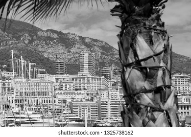 Principality of Monaco - 31.08.2018: panorama overview of Port Hercule and Monte-Carlo with palm tree in foreground. Black and white.