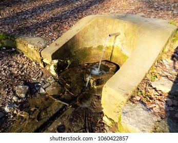 prirodni izvor u parku - Shutterstock ID 1060422857