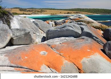 Pristine beaches of The Garden, Bay of Fires, Tasmania, Australia
