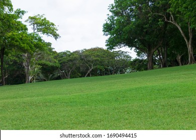 Pristine well kept lawn at Pigeon Island National Park in Saint Lucia