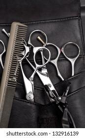 pro scissors in case and comb