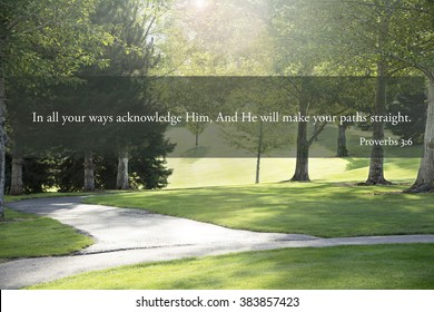 Proberb 3:6 acknowledge him and he will make your path straight on image of meadow and paths