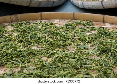 Process after Japanese tea is picked