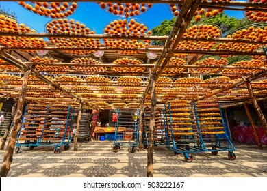 "Process of Making Dried Persimmon during Windy Autumn in Hsinpu (With Chinese Name of the Factory""Wei Wei Gia"") , Hsinchu, Taiwan."