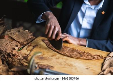 Verfahren der Herstellung von traditionellen Zigarren aus Tabakblättern mit Händen mit einem mechanischen Gerät und Presse. Blätter von Tabak für die Zigarrenherstellung. Nahaufnahme, weicher Fokus und schöner Bokeh.