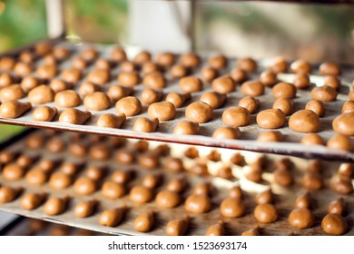 A process of production sweet bakery products at the factory.