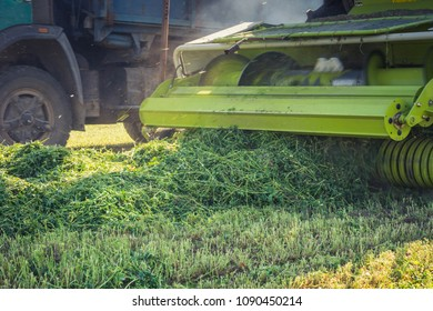 process of selection of green forage harvester