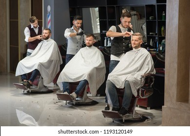 Process of styling and grooming men's haircuts in barbershop. Three professional and confident barbers standing and cutting hair of men. Male clients sitting in chairs and wearing haircut gowns.