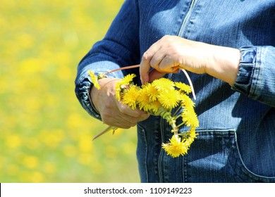 The process of weaving a wreath. Female hands weave a wreath of yellow dandelions. Nature.