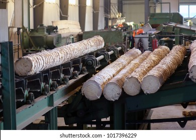 Processing of timber at the sawmill