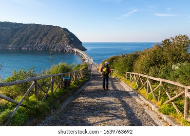 Procida (Italy) - Vivara Island, a nature reserve and protected oasis in Procida, Phlegrean Fields