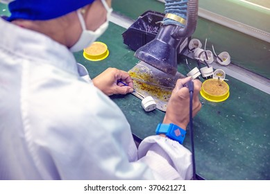 Production line lighting LED Lighting And manufacturing
