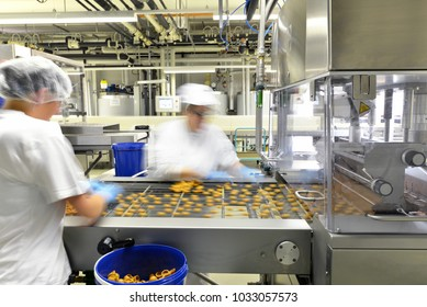 Production of pralines in a factory for the food industry - women working on the assembly line