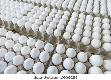 The production and sale of chicken eggs. Easter