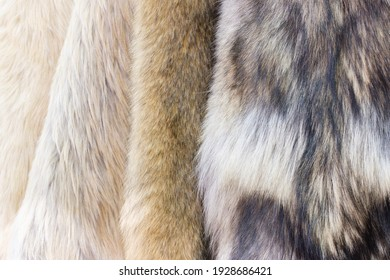 Products from natural fur wild animals