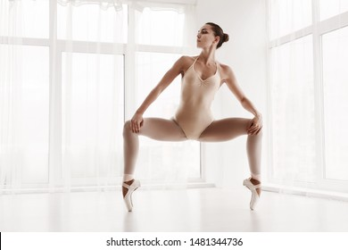 Professional Ballet Girl Doing Grand Plie In Second Position. Dance Training Concept. Panorama, Free Space