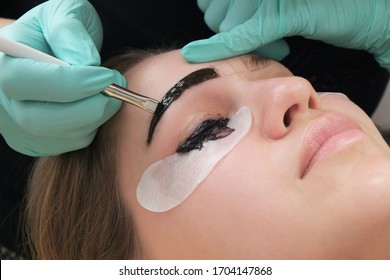 Professional beautician treatment concept. Eyelash lamination, extension performed on beautiful model. Close up portrait, young woman getting eyebrow threading, painting, macroblade shaping procedure.