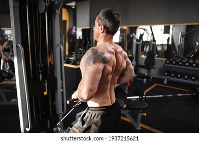 Professional bodybuilder exercising at the gym, doing back muscles exercise
