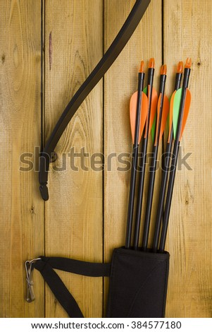 Professional Bow Set Arrows Hunting Sports Stock Photo (Edit Now