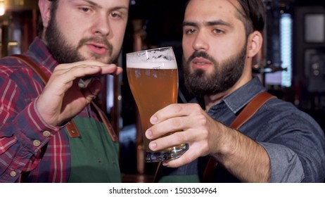 Professional brewers examining delicious craft beer in a glass