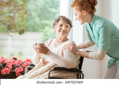 A professional caretaker in uniform helping a geriatric female patient on a wheelchair. Senior holding a cup and sitting by a large window in a rehabilitation center.