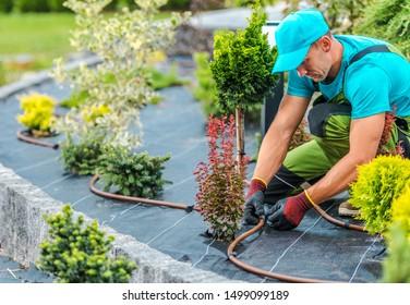 Professional Caucasian Gardener Building Plants Irrigation System in Developed Garden. Industrial Theme.