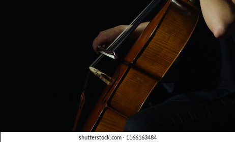 Professional cellist playing her cello instrument.