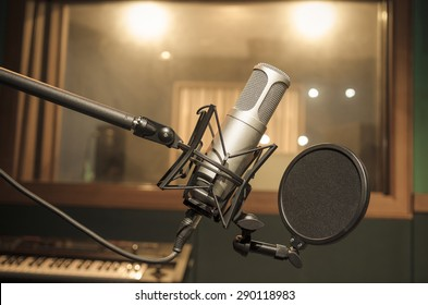 Professional condenser studio microphone, Musical Concept