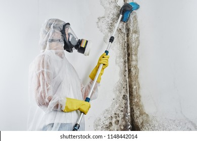 A professional disinfector in overalls processes the walls from mold with a brush. Removal of black fungus in the apartment and house. Aspergillus.