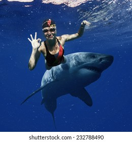 professional female swimmer attacked by Great White Shark