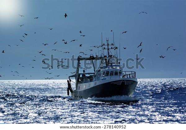 pêche professionnelle avec de nombreux mouettes reviennent dans le port