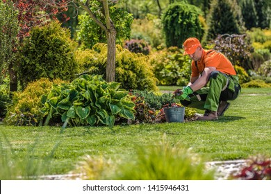 Professional Garden Worker. Caucasian Gardener and the Backyard Maintenance. Agriculture Industry Theme.