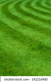 Professional grass with the circle