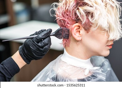 The professional hairdresser uses a brush to apply the pink dye to the hair. Hair coloring concept.