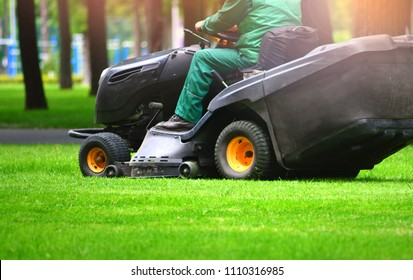 Professional lawn mower cuts the grass