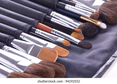 Professional make-up brushes in leather case