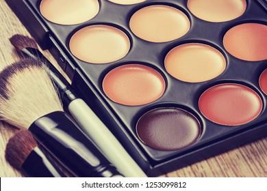 professional makeup palette, makeup brushes, makeup products  (toning)