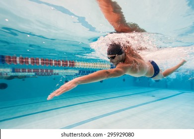 Professional man swimmer inside swimming pool.