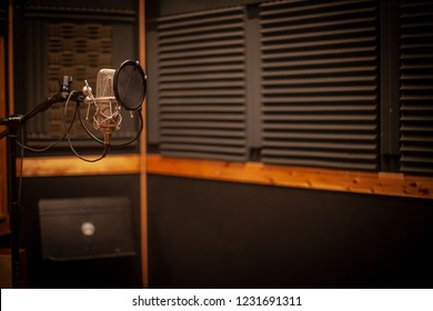 Professional Recording Studio Microphone, Vocal Booth