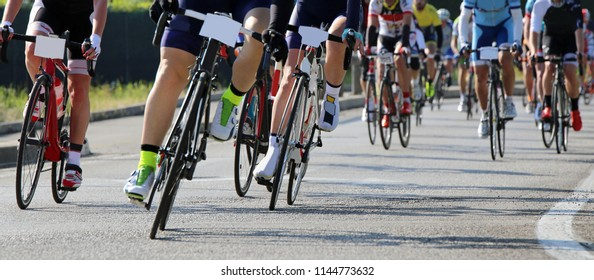professional road cycling race with many athletes